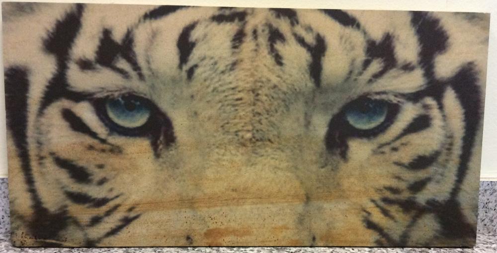 quadro sguardo di tigre
